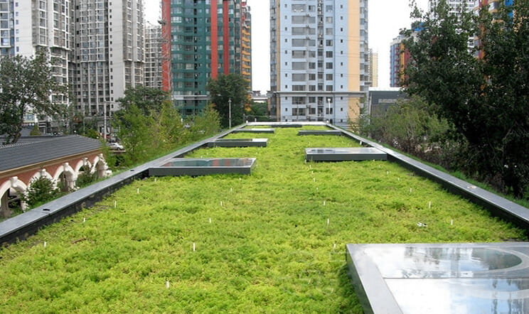 green roof modular tray system